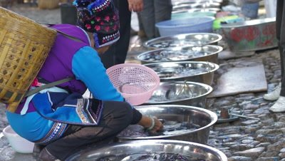 Woman Selecting Fish in the Market, Dali, Yunnan, China