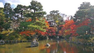 Maruyama Park, Kyoto, Japan