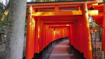 Torri Gate in Fushimi Inari Shrine, Kyoto, Japan