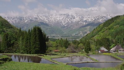 Rice paddy and Hakuba mountains in Nagano, Japan