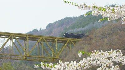 Steam locomotive Ginga travelling over Onigasawa bridge in Iwate, Japan