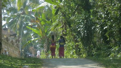 Women Carrying Food on Their Head, Ubud, Bali, Indonesia