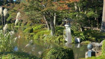 Kenrokuen Garden in Autumn, Kanazawa, Japan