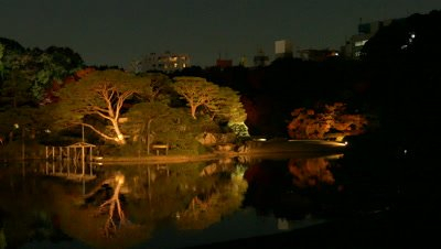 Night View of Rikugien Garden in Autumn, Tokyo, Japan