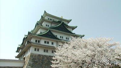 Nagoya Castle and Cherry Blossoms, Nagoya, Japan