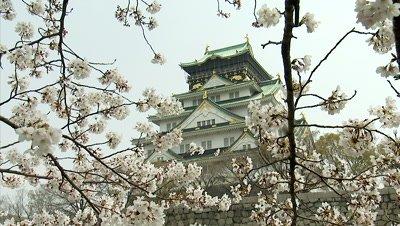 Osaka Castle and Cherry Blossoms, Osaka, Japan