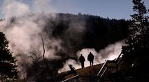 Steam Rises Around Boardwalk, Norris Geyser Basin Yellowstone National Park