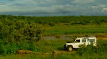 Safari Adventure Stock Footage