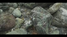 Colorful Rocks Fill The Shoreline Of A Coastal Beach, Big Sur. Cine-Slider Shot.
