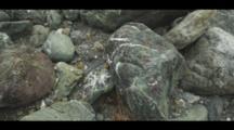 Colorful Rocks Fill The Shoreline Of A Coastal Beach, Big Sur. Cine-Slider Shot.