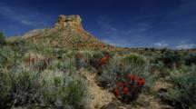 Eroded Red Rock Mesa Against Blue Sky And Clouds, With Indian Paintbrush And Desert Sage Flat, Near Rim Of Grand Canyon, Arizona.