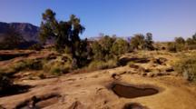 Sandstone Pot Hole Pool Seasonally Filled With Winter Rains, Arizona.