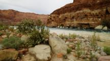 River At Lees Ferry, Mixed Color Waters, Fast Current, Many Colored Rocks And Plants.