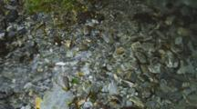 Crystal Clear Water Flowing From A Pond Out A Stream Over Chunky Shale Rock. South Island, New Zealand.