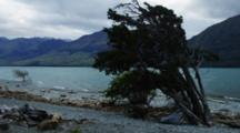 Wind Blowing Along The Lake, Trees Bending In The Wind, Time Lapse Shows Moving Clouds And Breaking Waves. South Island New Zealand.