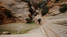 Creek And Pool Of Water Amid Red Rock Sandstone Canyon. Zion National Park, Utah.