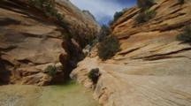 Karen Ward Walks Past The Stream In A Steep Red Rock Canyon. Zion National Park, Utah.