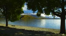 Trees Line The Beach Of Lake Wanaka At Glendhu Bay.