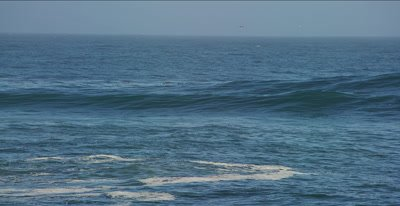 SURF Waves, Swell