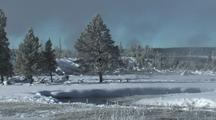Snowy Pines And Steamy River