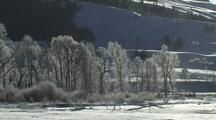 Icy Trees Behind Steam Rising From River