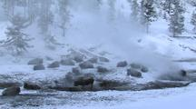 Bison (Bison Bison) Rest And Stand In Thermal In Steam And Snow