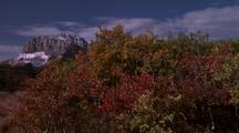 A Strong Breeze Rustles The Autumn Colored Leaves With A Snowy Rocky Mountain In The Background.