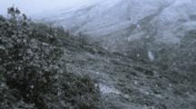 Snow Falls In Large Flakes In Mountains