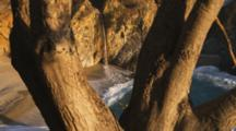 Waterfall On Beach Framed By Tree