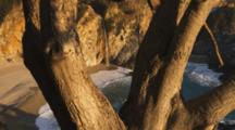 Waterfall On Beach Framed By Tree