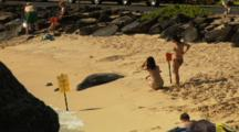 Telephoto Of Girls Looking Away At Monk Seal, Backs To Camera