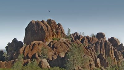 California condors fly on updraft by pinnacle rocks