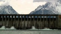 Jackson Lake Dam And Animals In Grand Teton National Park