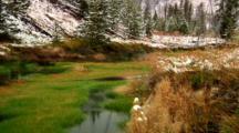 Snow Flurries Around Winter Creek In Yellowstone