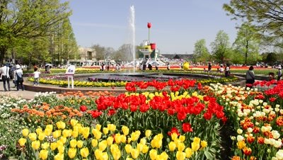 Tonami Tulip Fair landscape with fountain,tourists