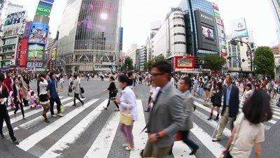 Fisheye,People walking at Shibuya scramble crossing,Tokyo