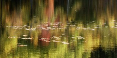 Fall color reflections on a pond