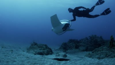 A free diver glides underwater with a non motorized / gravity contraption called a Dive Glide above large stingray