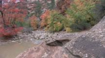 Edited Compilation Of Fall Colors In Utah's Iconic National Parks