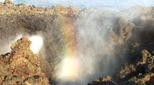 Spray From Blow Hole Creates Rainbow