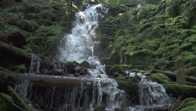 Waterfalls of Oregon and California - Video Décor
