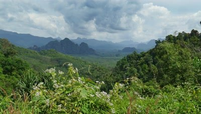 Landscape with Rainforest of Khao Sok National Park in Thailand, 4k