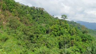 Panorama landscape with Rainforest of Khao Sok National Park in Thailand, 4k