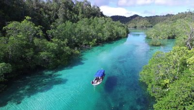 Flying above boat moving through mangroves on Pulau Pef in Raja Ampat