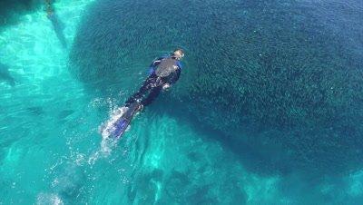 Snorkeler moving through massiv school of fish around pier at Arborek Tourism Village in Raja Ampat
