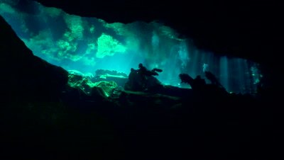 Diving the Cenotes of Yucatan - Video Decor Reel