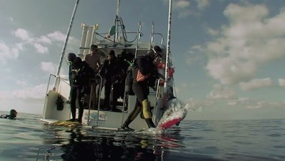 scuba diver jumps off boat,tracked under water