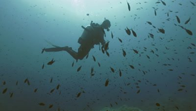 underwater shot of single scuba diver,silhouette in open water