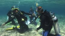 Scuba Diving Class, Regulator Recovery Skill