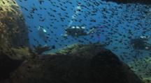Scuba Divers Swim Past Underwater Cave With Shoal Of Swallowtail Cardinalfish, Rhabdamia Cypselura